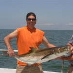 COBIA Cobia are well known for their great fight and are also great to eat. Cobia will arive in the Lower Chesapeake Bay in mid-May and will stay in the Chesapeake Bay untll late September. We will be sight casting, trolling and also live and dead baiting for these Cobia.