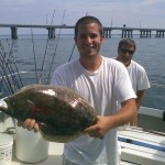 FLOUNDER: Flounder are another great tasting fish found in the lower Bay. From early May to late October, fish ranging from 1 to 15 pounds are in season. Most of the big flounder that are caught in the Chesapeake Bay come from the structures of the Chesapeake Bay Bridge Tunnel.