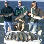 steve-rockfish-small