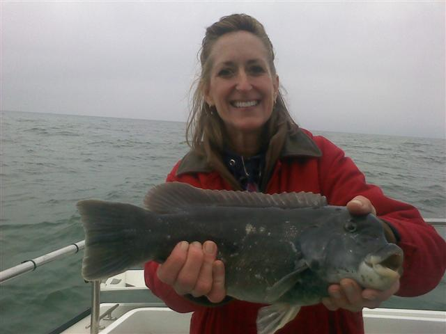 Another great day of chesapeake bay tautog fishing for Ocean city nj fishing report