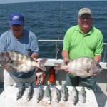 SHEEPSHEAD (The Poor Man's Lobster) Sheepshead are another great eating fish. You can find these fish in the Lower Chesapeake Bay from June until October. Most of the Virginia Saltwater fishing tournaments' citations are caught at the Chesapeake Bay Bridge Tunnel.