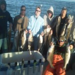afternoon rockfish (Small)