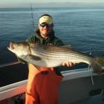 edlarge-rockfish-small