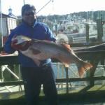 40 pound Rockfish