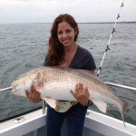 RED DRUM (Channel Bass) Red Drum is one of the most noble fish in the Chesapeake Bay. Available in the Lower Chesapeake Bay from May to September, Red Drum put up a great fight. We will be trolling, livebaitting and dead baitting for these big Red Drum.