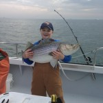 STRIPED-BASS (Rockfish, Striper) A great fight and one of the best tasting fish in the Chesapeake Bay, Rockfish are found in the lower bay all year long. They can only be kept from May 1st to June 15th and from October 4th to the end of March.