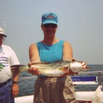 GREY TROUT (Weakfish, Sea Trout) These trout are available from late April to November in the Chesapeake Bay. The largest concentrations are around the structure of the Chesapeake Bay Bridge Tunnel. We will be jigging and live baiting for these fish that range in size from 1 -12 pounds.