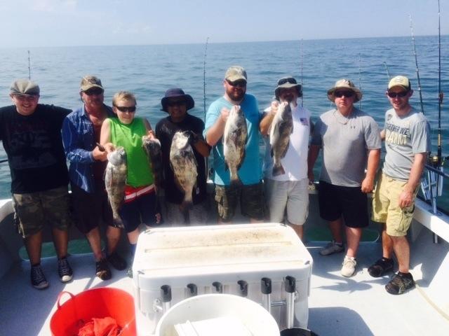Sheepshead fishing charter chesapeake bay charter fishing for Chesapeake bay charter fishing