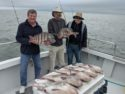 Chesapeake Bay black drum fishing